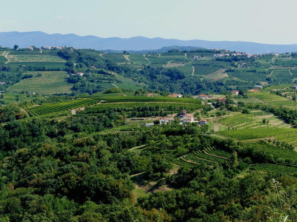La campagne slovène depuis Šmartno.