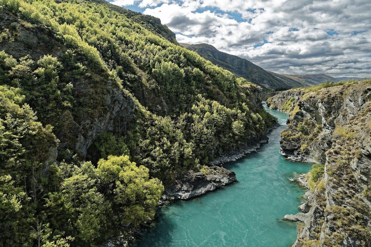 Pêcher en Nouvelle-Zélande