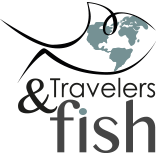 Travelers and fish