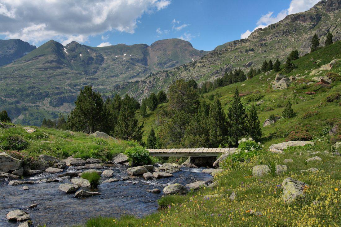 Pêche en Andorre, sur un torrent de montagne