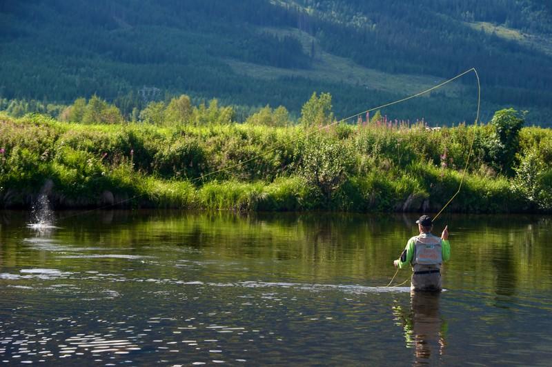 Pêcheur à la mouche à Hemsila, dans le nord de la Norvège