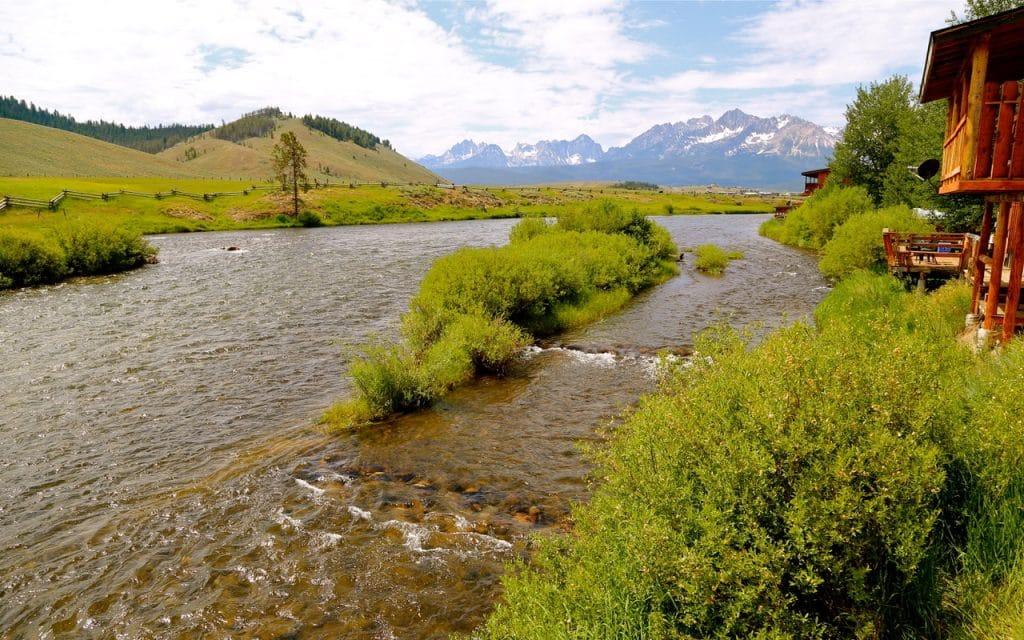Pêche Idaho sur la Salmon River