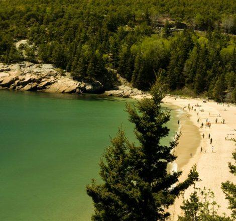 plage Acadia National Park