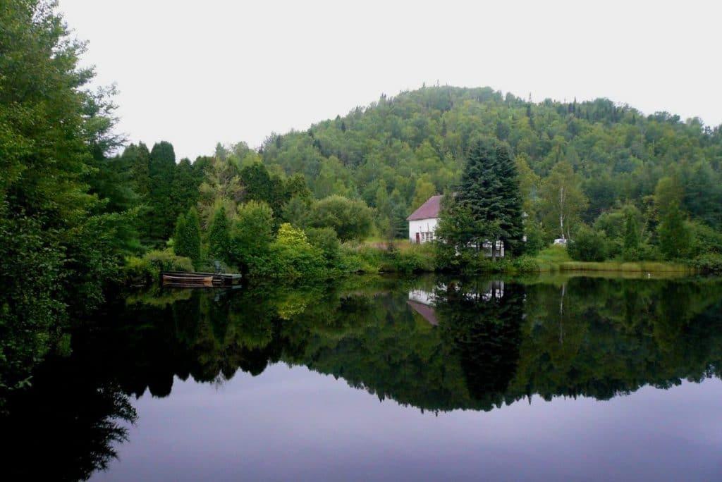 Petit étang à Saint-Fulgence