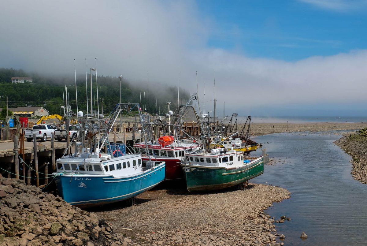 Beatux sur la plage d' Alma dans la baie de Fundy