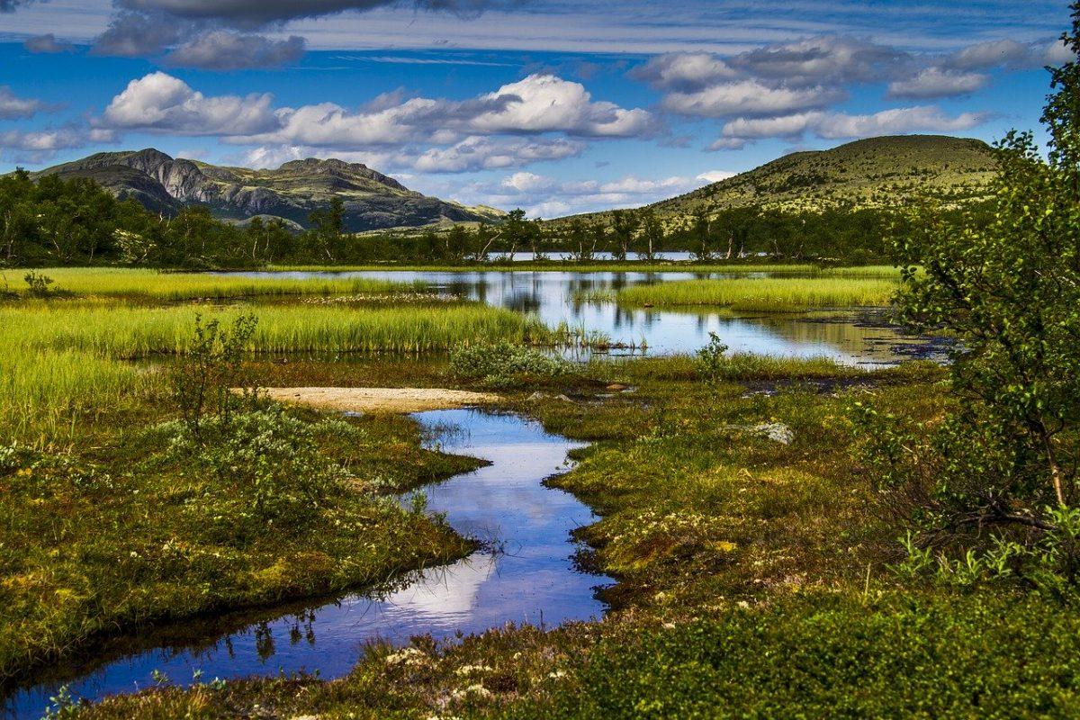 Pêcher en Norvège dans des paysages préservés