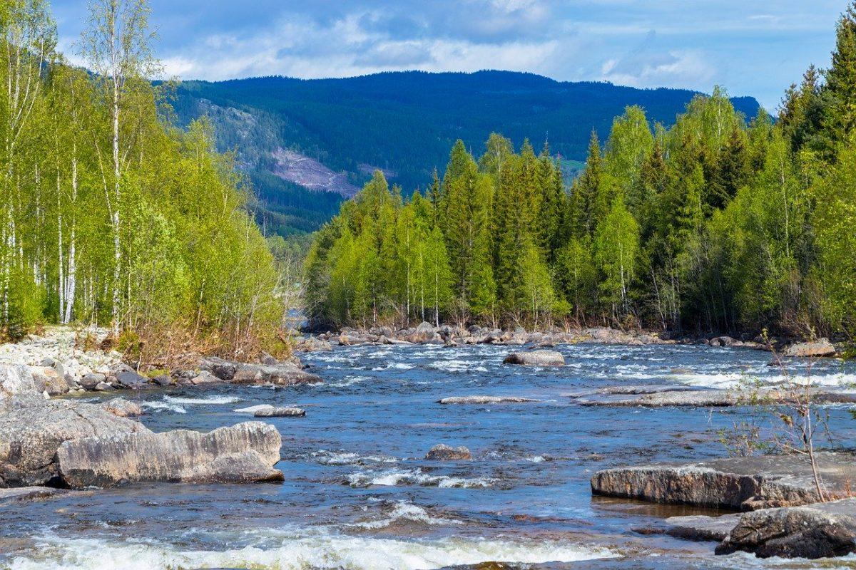 Une rivière magnifique pour pêcher en Norvège