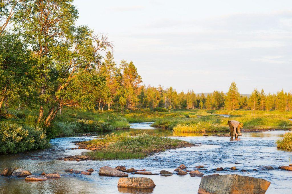 Pêche en Finlande : lever de soleil sur la rivière