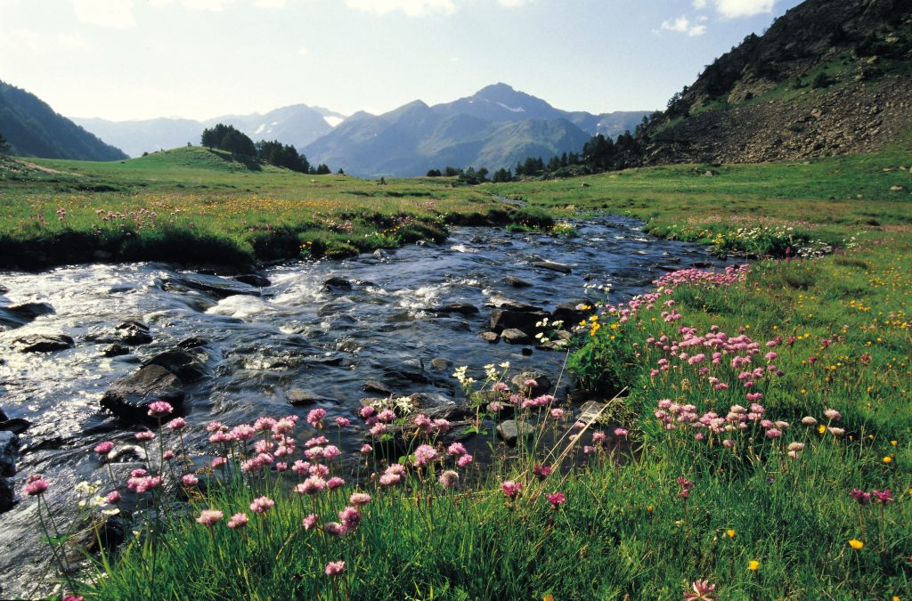 Pêche en rivière en Andorre