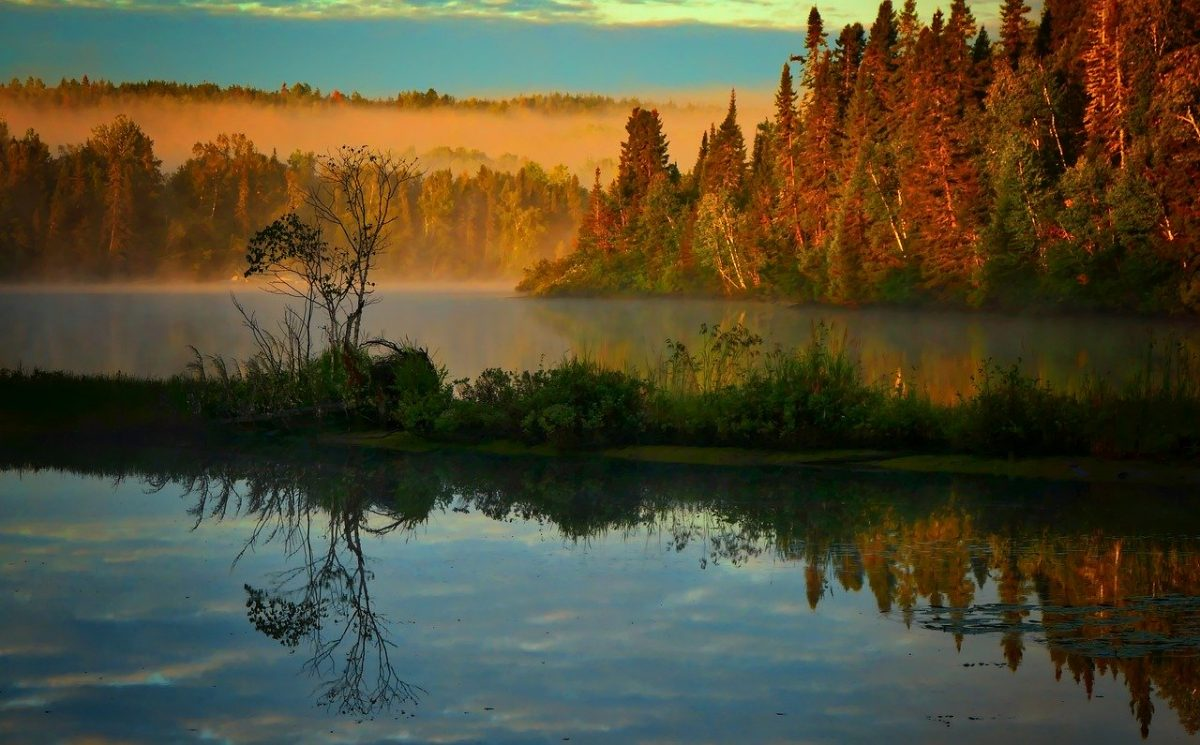 Pêche au Québec, dans un paysage d'automne