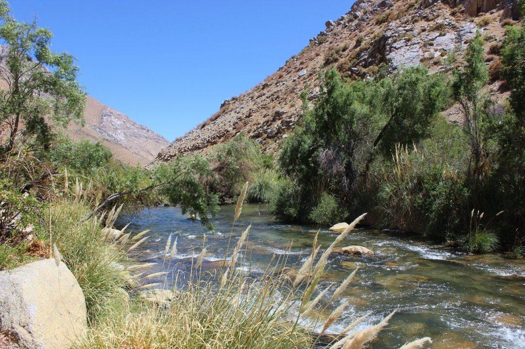 Pêche sur le rio Cochiguaz au Chili
