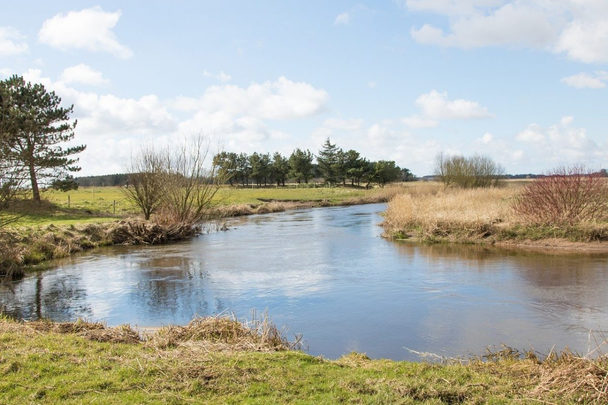 Rivière Kongeå au Danemark