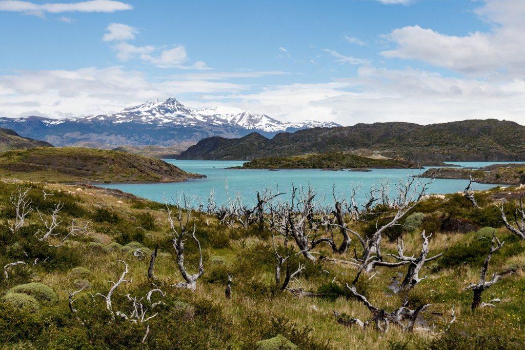 Pêche sur un lac de Patagonie chilienne