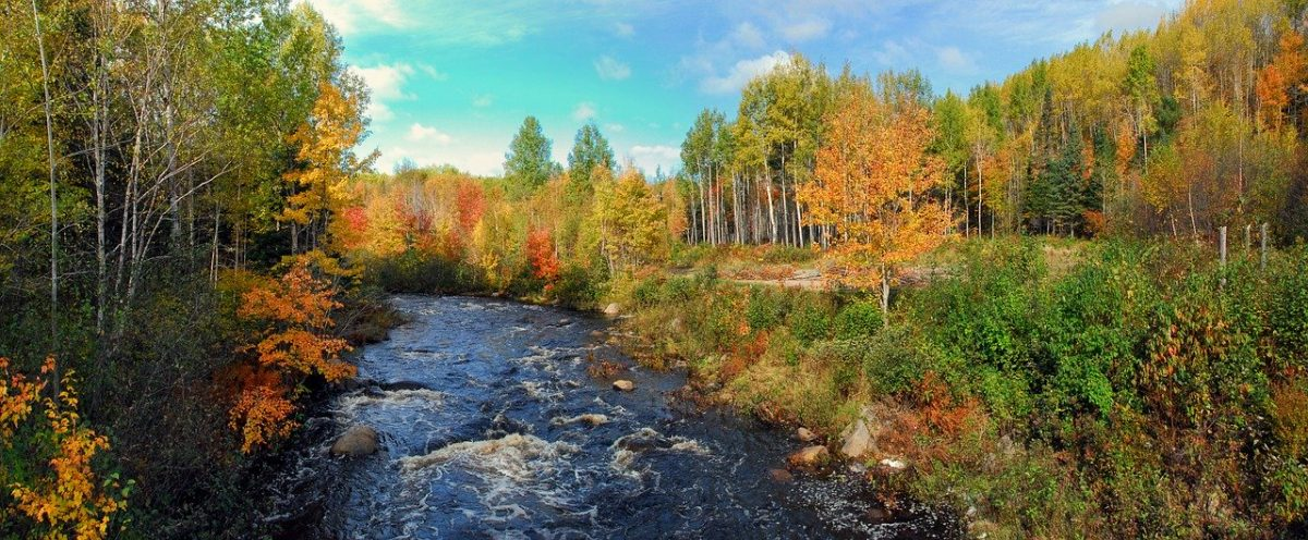 Rivière du Nouveau Brunswick