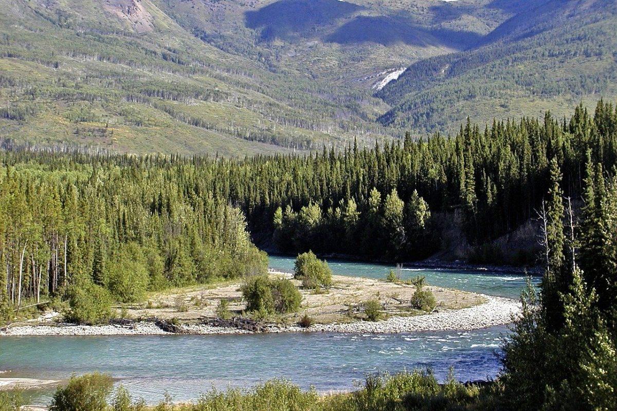 Pêche sur une rivière du Yukon