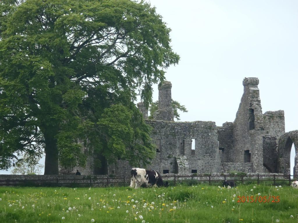 chateau en ruine près de Navan, Irlande