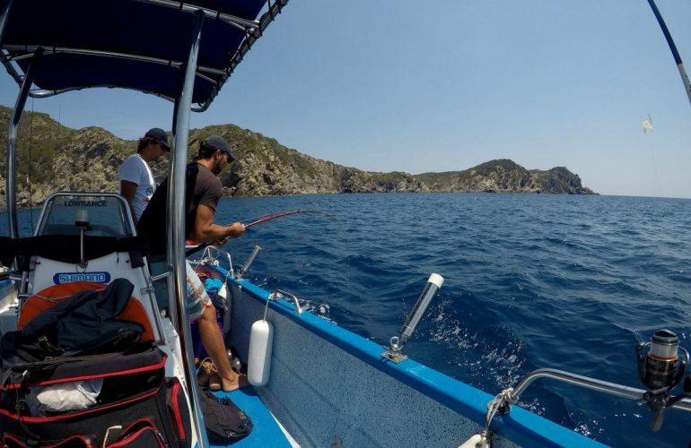 pêcheurs dans les eaux de Hyères