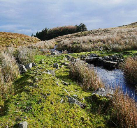 Pêche en Irlande dans les paysages de Clonbur
