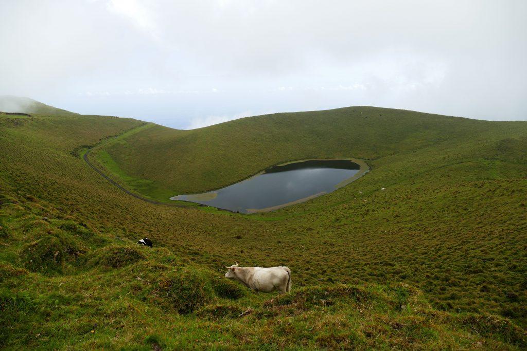 Lagoa da Rosada sur Pico - Açores