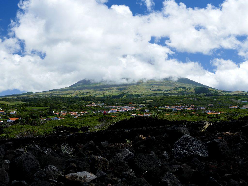 Vignes de Criação Velha sur Pico - Açores