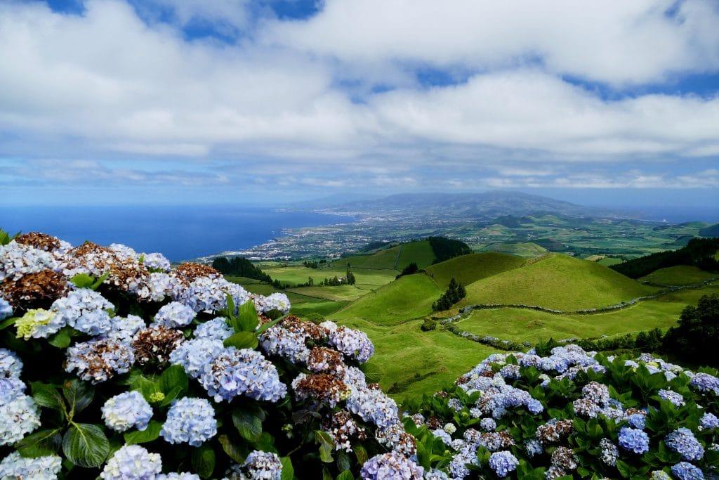 panorama sur Sao Miguel et hortensias (Açores)
