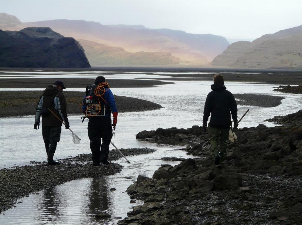 pêche électrique sur les îles Kerguelen