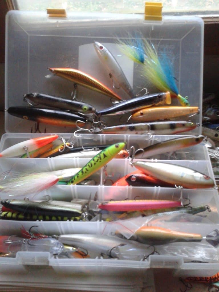 les différents types de leurres à prendre pour cette pêche : poissons à hélice, minnows, stickbaits et poppers