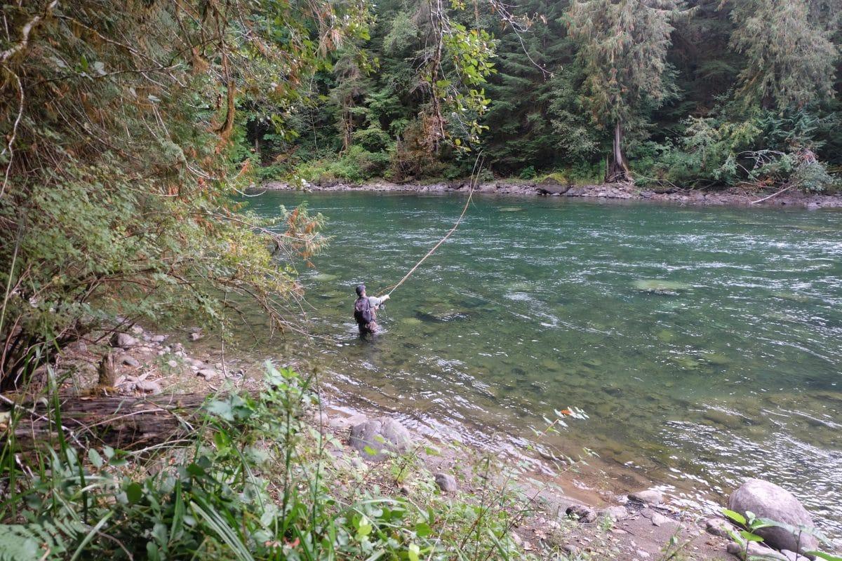 pêcheur dans la rivière Stamp - île de Vancouver