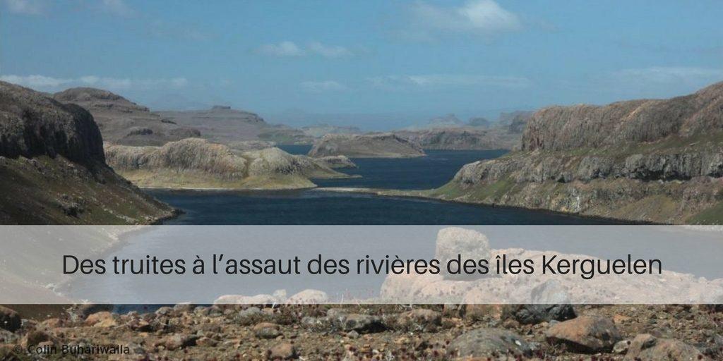 Des truites à l'assaut des rivières des îles Kerguelen
