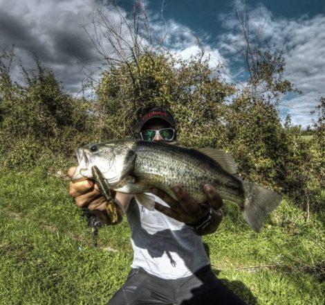 Pêche dans le Lot : joli black-bass capturé au leurre souple