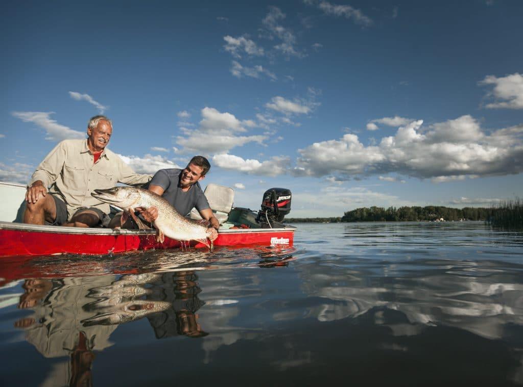 Pêche du brochet dans l'Alberta (Island Lake)