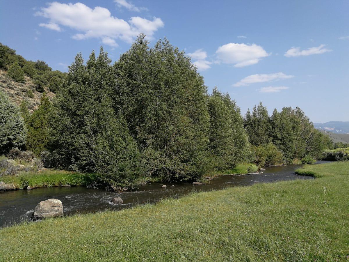 Pêche sur la rivière Fremont dans l'Utah