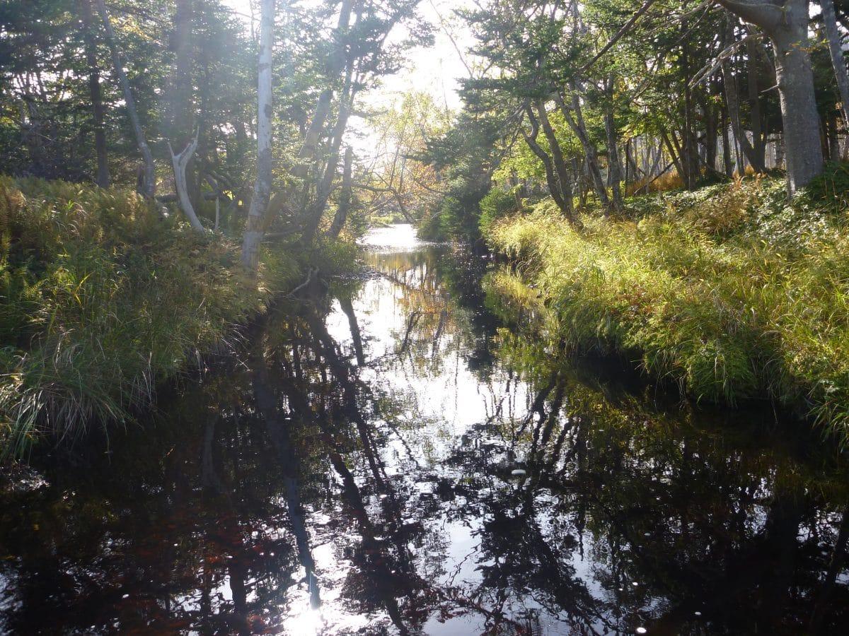 Ruisseau Sylvain (Miquelon)