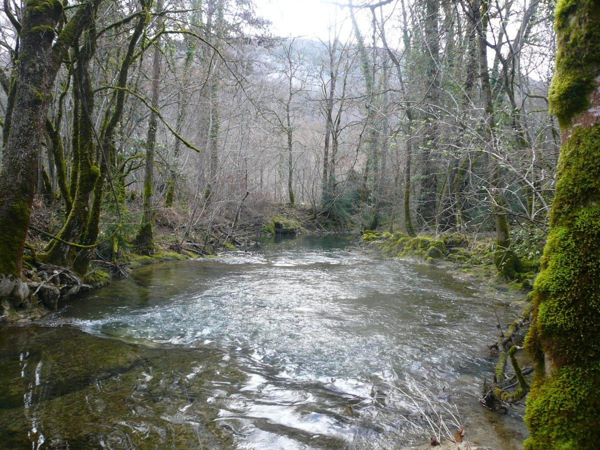 La rivière Vers