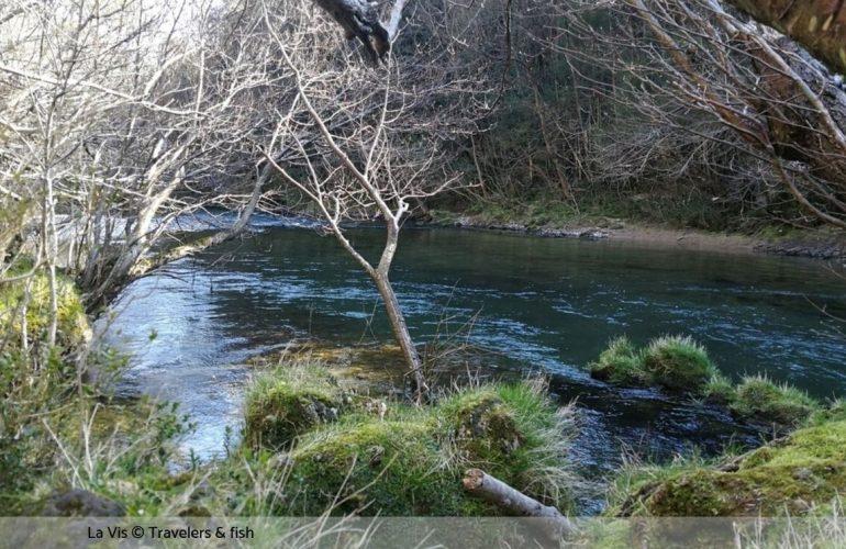 Pêche sur la Vis dans l'Hérault (34)