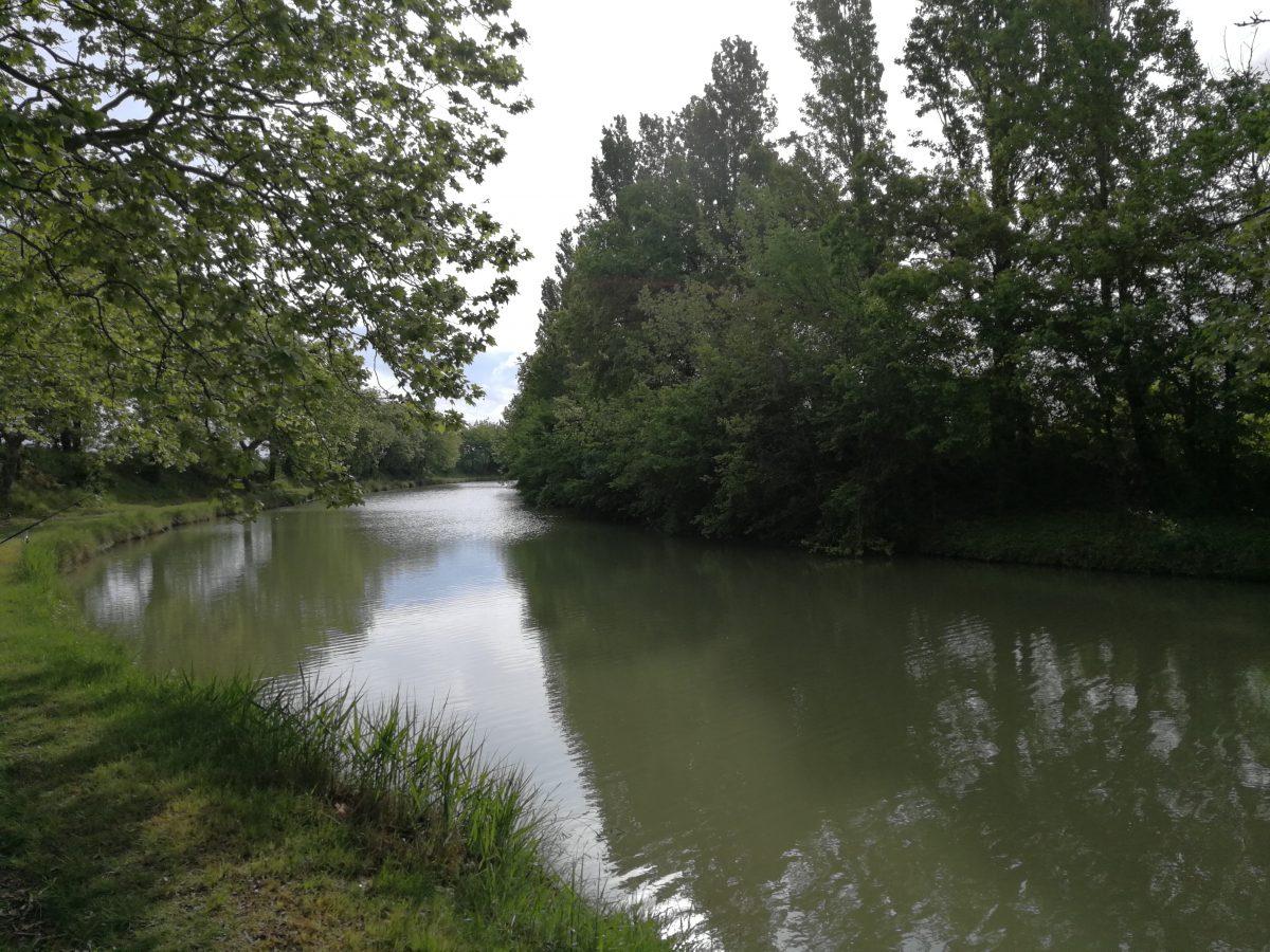 Pêche du carnassier dans l'Aude sur le Canal du Midi