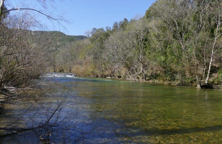Pêche sur la rivière Vis dans l'Hérault (34)