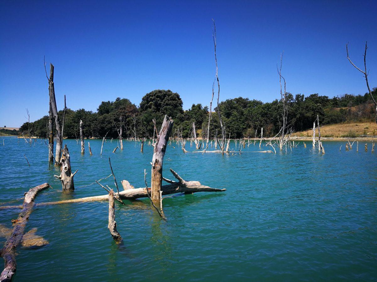 Pêche du carnassier dans l'Aude sur la Ganguise