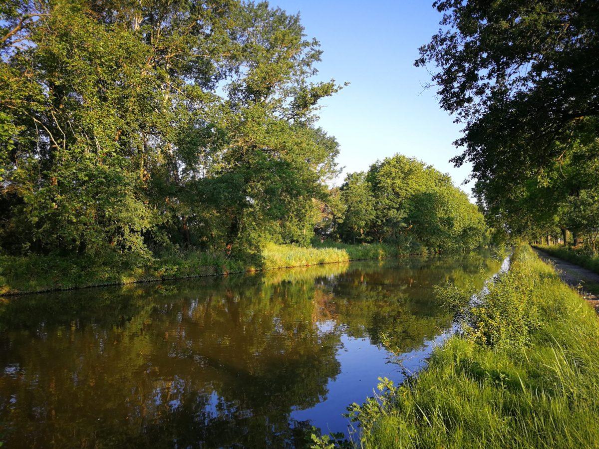 Pêche du carnassier sur le Canal du Midi dans l'Aude