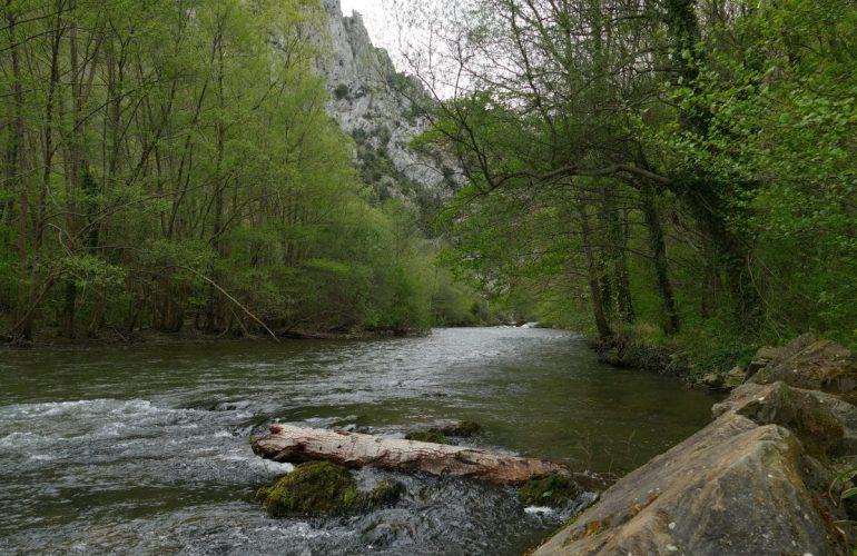 Pêche de la truite sur l'Aude