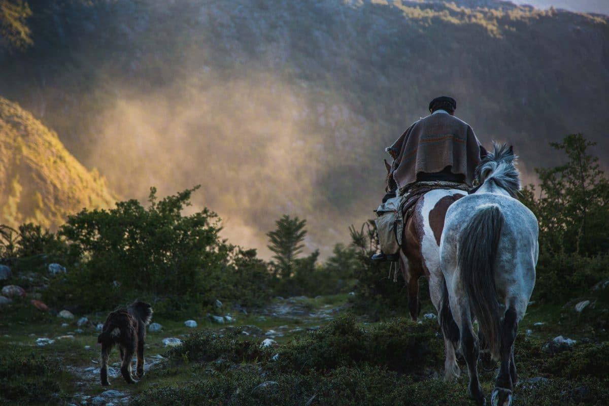 Un paysan sur son cheval dans un paysage chilien magnifique