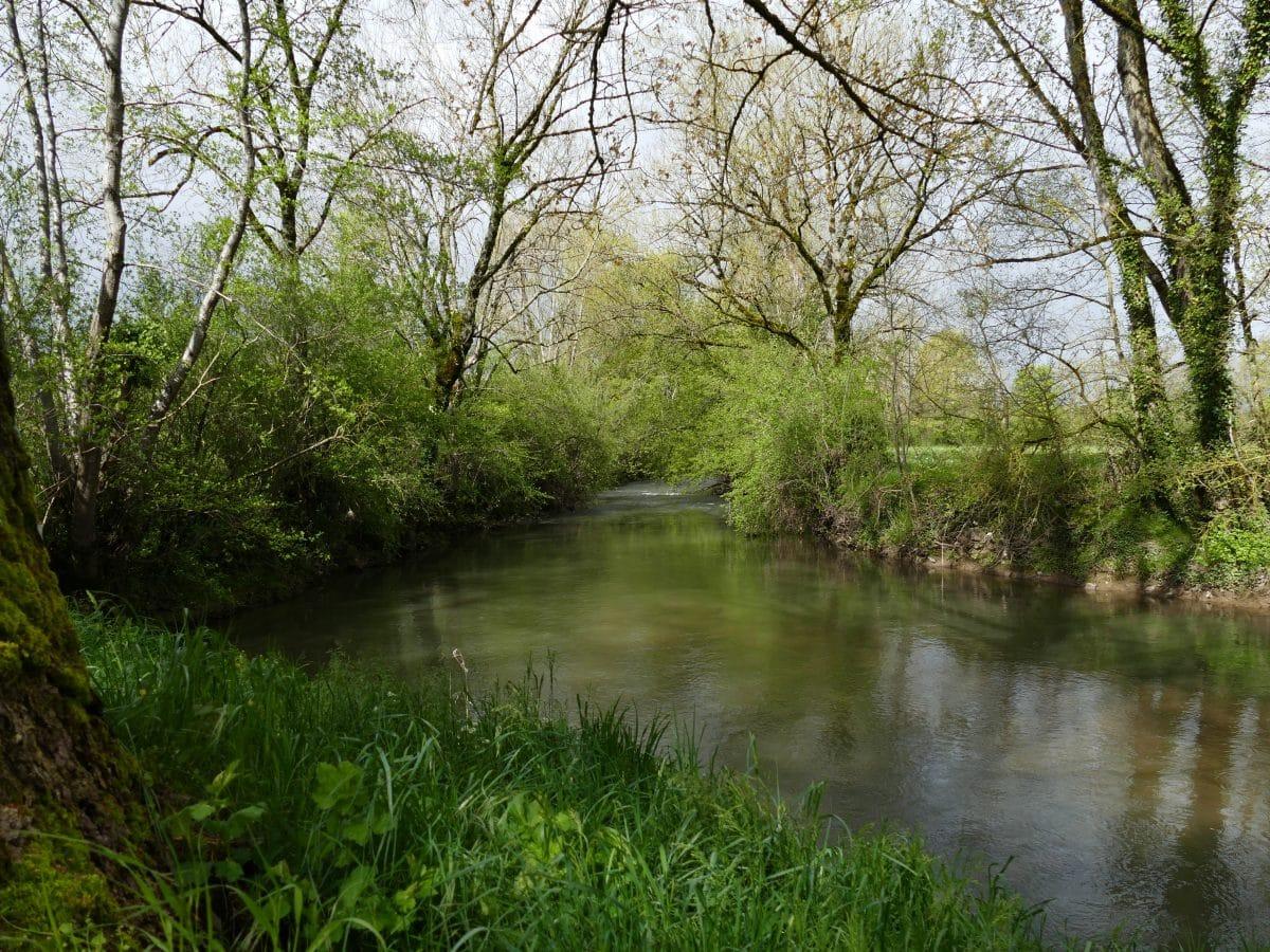 Pêche de la truite sur la rivière Aveyron