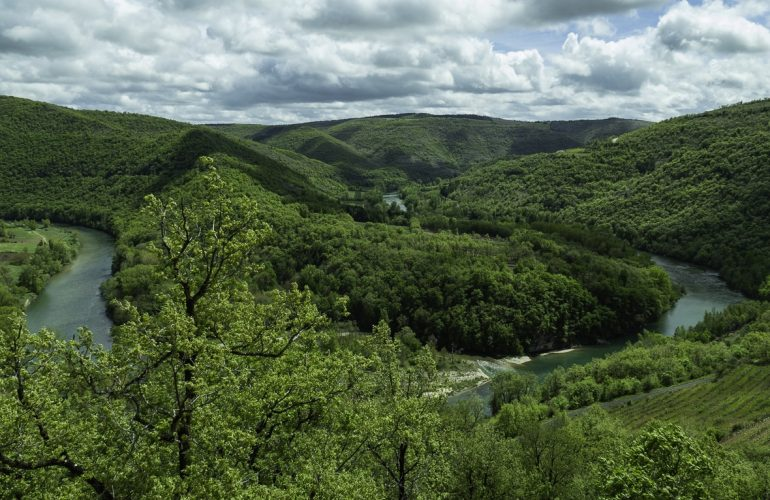Pêche de la truite en Aveyron sur la rivière Tarn