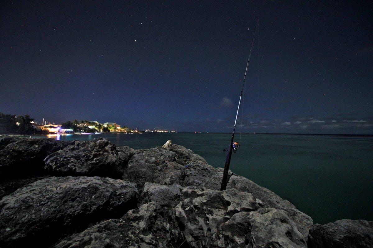 Session pêche de nuit