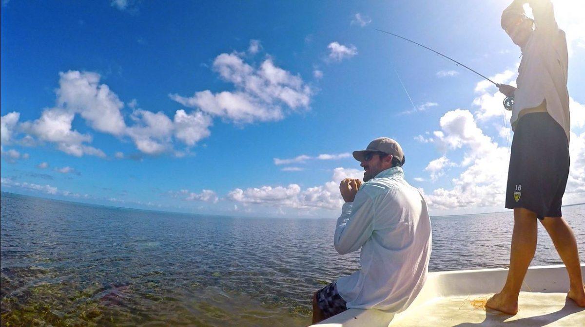 Pêche sur bateau en Guadeloupe : poisson manqué !!