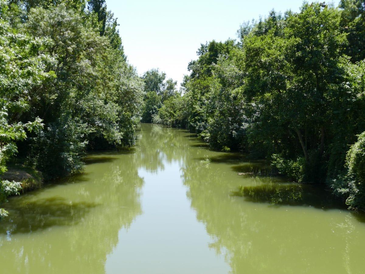 La rivière Baïse dans le Gers