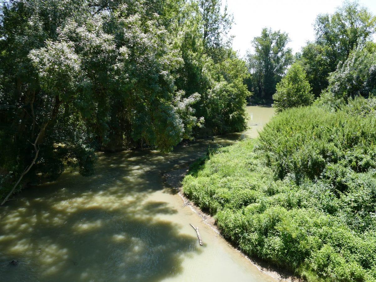 Pêche sur la rivière Gers dans le 32
