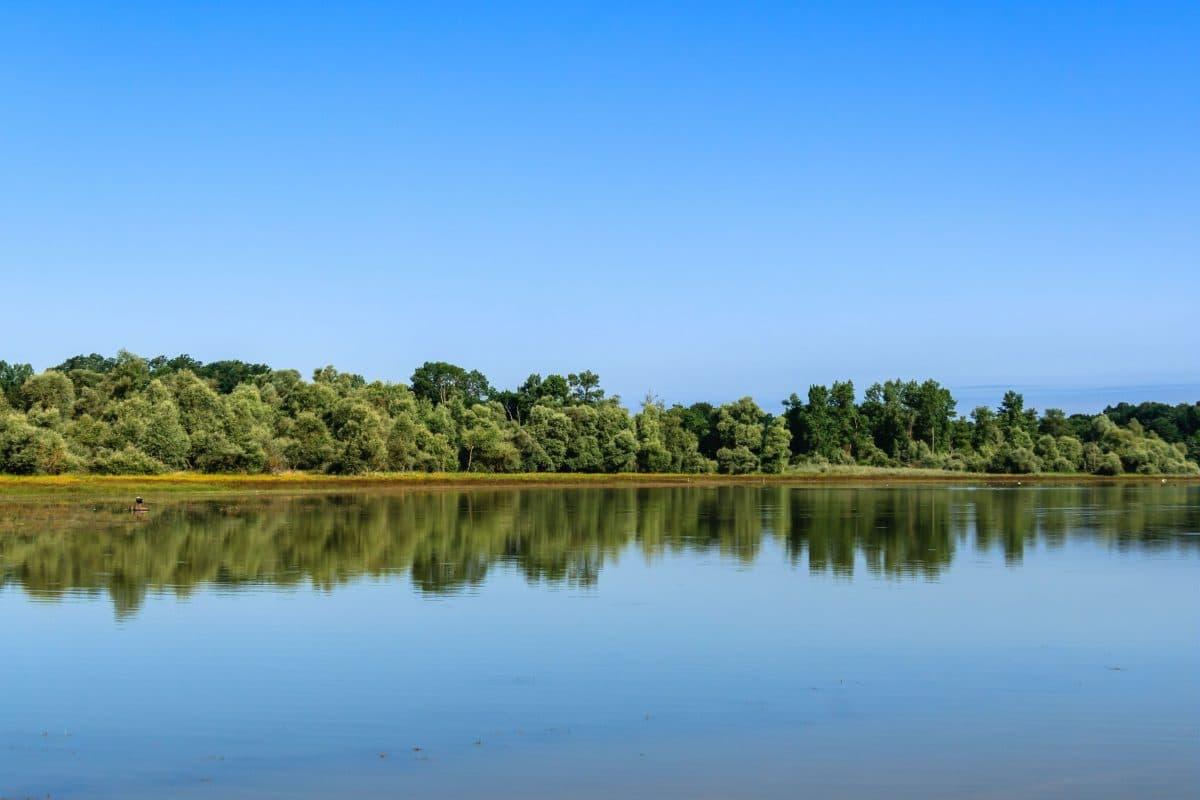 Pêche dans le Gers sur le lac de Miélan, à la recherche de carpes ou de carnassiers