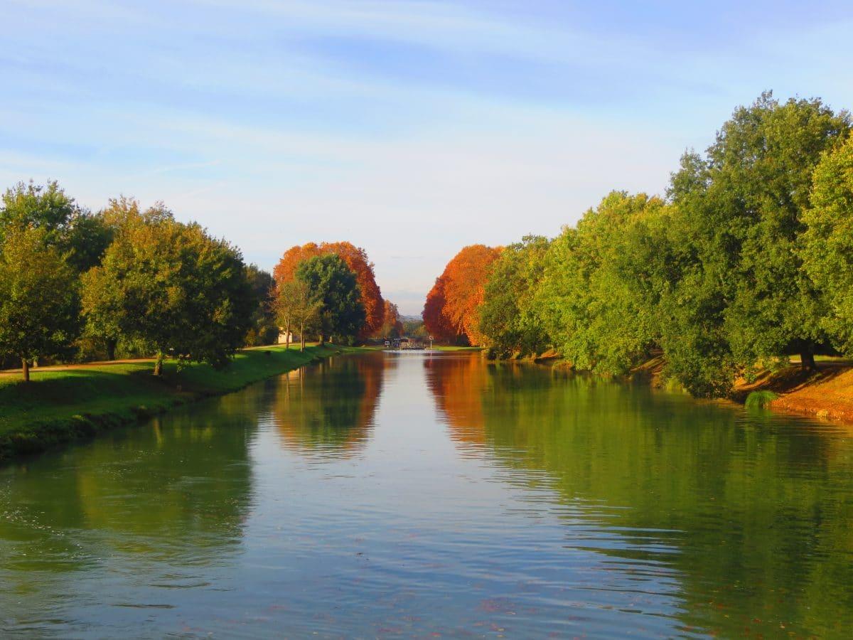 Pêche sur le Canal Latéral à la Garonne