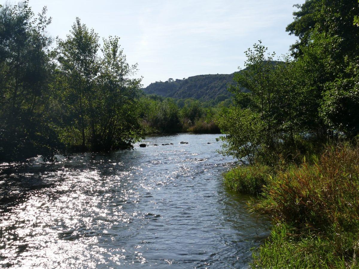 Pêche sur la Têt dans les Pyrénées-Orientales (66)
